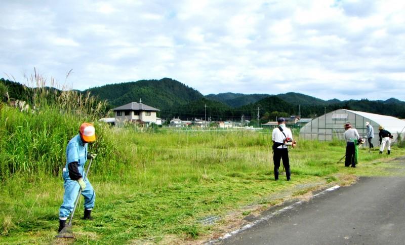 駐車場・草刈り(1)