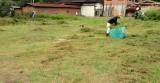 駐車場・草刈り(4)